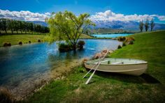 Here's a cute little row boat by a mini lake by a bigger lake here in Cromwell, which is about an hour from Queenstown.