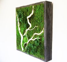 Plant Painting® No Care Green Wall Art. Real by ArtisanMoss