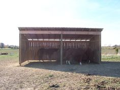 Run-in shed built with pallets