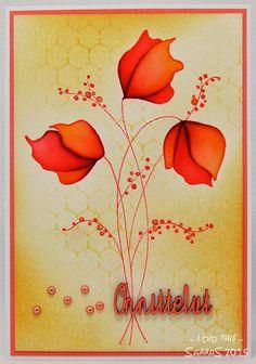korttipaja SannaS: oranssein onnitteluin...