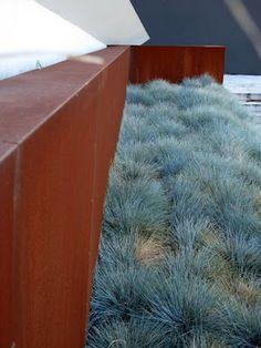 Steel Cladding corten with blue fescue/ Lump Sculpture Studio