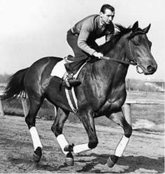 Seabiscuit- the undersized Depression-era racehorse who surprised and gave hope to the nation