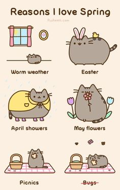Imagem de cat, spring, and pusheen