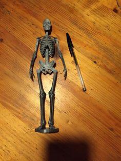 Human+Skeleton+by+Mvetto.