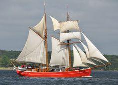 Rum regatta