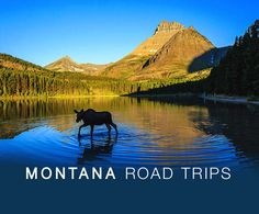 These hidden gems are what make Montana's Glacier National Park so cool | Stories | Roadtrippers