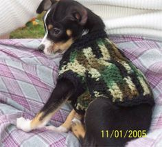 Free Dog Crochet Costume Patterns Crochet Halloween Costume, Crochet Costumes, Dog Halloween, Dog Crochet, Crochet Animals, Crochet Gifts, Cat Sweaters, Crochet Sweaters, Pet Dogs