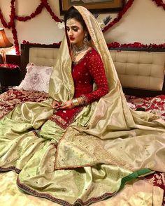 Bridal Mehndi Dresses, Walima Dress, Shadi Dresses, Pakistani Bridal Dresses, Pakistani Dress Design, Pakistani Wedding Dresses, Pakistani Outfits, Bridal Outfits, Indian Dresses