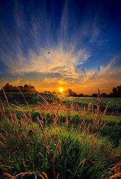 For When The Day Began by Phil Koch on 500px