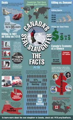 Seal Slaughter Infographic/2012