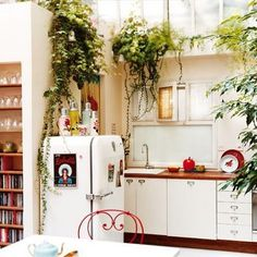 love the idea of the plants up high hanging down.
