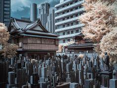Shinjuku, Japan by https://www.flickr.com/photos/royalpineapple/