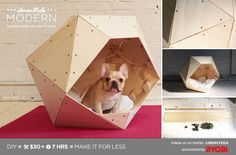 Cool Dog House Ideas | ... dog house by HomeMade Modern . It's almost as cool as dogs