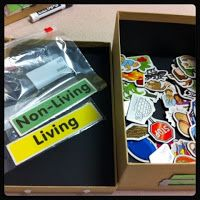 Teaching Special Thinkers: Autism Classroom Workbox System {TONS of pictures!}