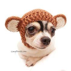 Monkey Dog Hats, Crochet Dog Hat, Cat Hats, Funny Dog Costume by Myknitt Crochet Dog Clothes, Monkey Costumes, Dog Cuddles, Monkey Hat, Cute Chihuahua, Designer Dog Clothes, Pink Socks, Cat Hat, Dog Supplies