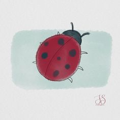 Ladybug Digital watercolor and line art Line Art, Iris, Watercolor Paintings, Insects, Snoopy, Ladybugs, Fictional Characters, Instagram, Illustrations