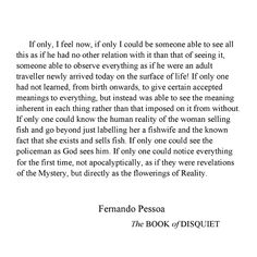 oh, my god.... that's all I could say as i was reading this:  oh, my god, he's saying what I have been thinking over and over and over again!     (fernando pessoa - the book of disquiet)