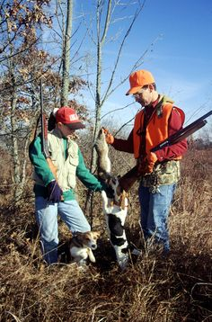 Rabbit hunting isn't a complicated sport, you can hunt rabbits many ways and in lots of habitat types. Beagle Hunting, Rabbit Hunting, Rabbit Season, Deer Photos, Hunting Girls, Outdoor Fun, Outdoor Stuff, The Fox And The Hound, Hound Dog