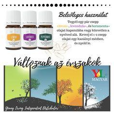 A borsmenta+ erőteljes, tiszta, friss mentolos illattal rendelkezik, és egyike a legrégebbi és legelismertebb növényeknek.
