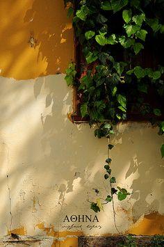 The Plaka, near the Acropolis --Athens, Greece Athens Apartment, Stuff To Do, Things To Do, Acropolis, Athens Greece, Greek Islands, Greece Travel, Beautiful Islands, Mykonos