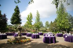 Avio Winery, Sutter Creek, CA. Sutter Creek Wedding, photography by Kept In Time Photography. Outdoor wedding reception with vintage theme.