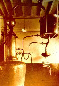 Bacardi founder Don Facundo Bacardí Massó created BACARDI rum using a pot still, known as an Alembic.