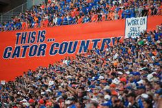 Gator Ticket Office Announces 2013 Football Season-Ticket Ordering - GatorZone.com
