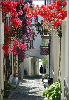 Gasse in Katalonien, Künstlerdorf, wo schon Picasso und Dali Urlaub machten. Places Around The World, Oh The Places You'll Go, Places To Travel, Places To Visit, Around The Worlds, Wonderful Places, Beautiful Places, Beautiful Flowers, Voyage Europe