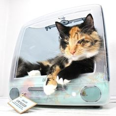 Upcycled iMac Pet Bed by Atomic Attic