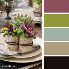 color-palette-735