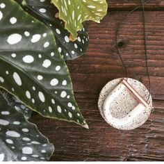 Love our pepper copper Jack by Sam necklace Shop now via #linkinbio Photo credit #jackbysam #lovelocal #handmade #melbourne #handmadejewelry #copper #flatlay #shopsmall #beanhomebody