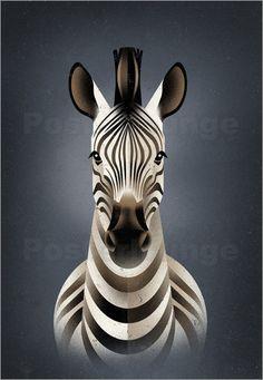 Dieter Braun - Zebra