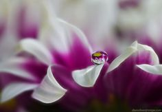 For the love of God by Diens Silver on 500px