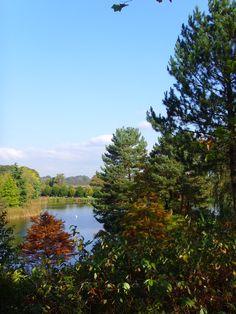 Bodenham Arboretum Worcestershire England 2007