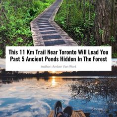 This 11 km trail near Toronto will take you beyond 5 ancient ponds hidden in the forest - Travel & Cool & Trend Places To Travel, Places To See, Travel Destinations, Travel Diys, Weekend Trips, Day Trips, Toronto, Westminster, Ontario Travel