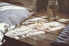 Image discovered by FX. Find images and videos about photography, flowers and light on We Heart It - the app to get lost in what you love. Vie Simple, Anne With An E, Merian, Make Beauty, Anne Of Green Gables, Slow Living, Morning Light, Light And Shadow, Sunlight