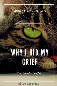 42 Best Pet Loss Grief & Pet Memorial Ideas images in 2019