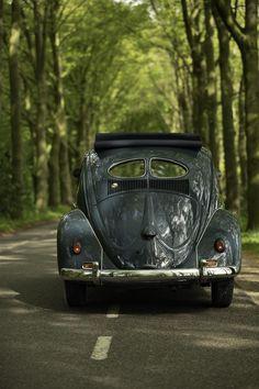 (Large) Enter your pin description here. Beetle, Volkswagen, Product Description, June Bug, Beetles