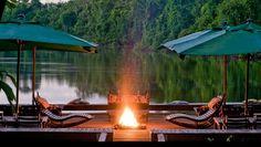 adoro FARM - um santuário no coração da amazônia