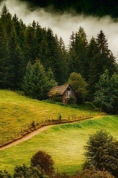 Forest cottage by Andy 58 Beautiful World, Beautiful Places, Beautiful Pictures, Landscape Photography, Nature Photography, Forest Cottage, Image Nature, Peaceful Places, Old Barns