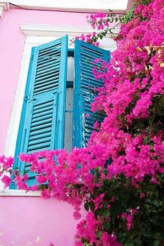 Bougainvillea in Syros island, Cyclades, Greece Jolie Photo, Greek Islands, Windows And Doors, Pretty In Pink, Beautiful Places, Scenery, Architecture, World, Pictures