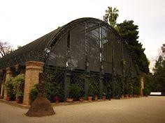 L'Umbracle, Jardín Botánico de la Universitat de Valencia