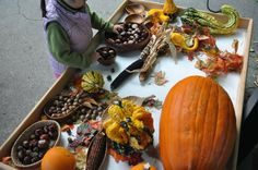 Stomping in the Mud: Autumn sensory table - Month End Snapshots - October 2013 ≈≈