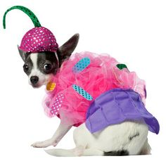 The website says this is a cupcake costume, but I'm pretty sure they meant  it's a Katy Perry costume.
