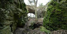 Skalní útvar Axamitova brána. Caves, Trunks, Bronze, Plants, Drift Wood, Tree Trunks, Blanket Forts, Plant, Cave