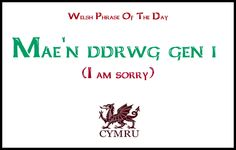 Welsh phrase of the day.