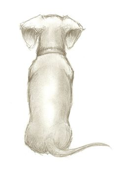 Teckel Clube Dessin - Teckel Clube dessiner Informations About Dachshund Clube zeichnen Pin You can easily us - Dachshund Drawing, Arte Dachshund, Dachshund Love, Dachshund Tattoo, Dachshund Puppies, Weenie Dogs, Doggies, Scottish Terrier, Dog Art