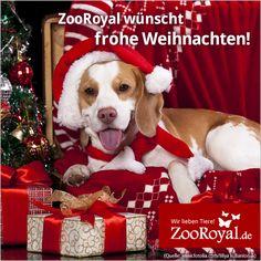 Wir wünschen euch und euren tierischen Lieblingen ein besinnliches Weihnachtsfest