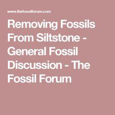 Two ways hookup fossils explain both