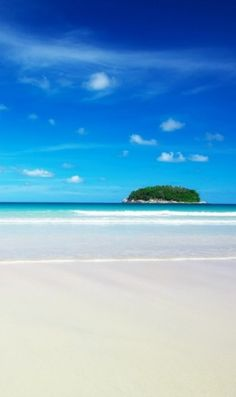 A beach in the Galapagos Islands ~ http://suitcasesandsunsets.com/galapagos-islands.html